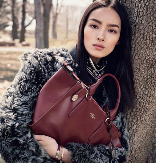 $214.99 COACH Smooth Leather Crosby Carryall
