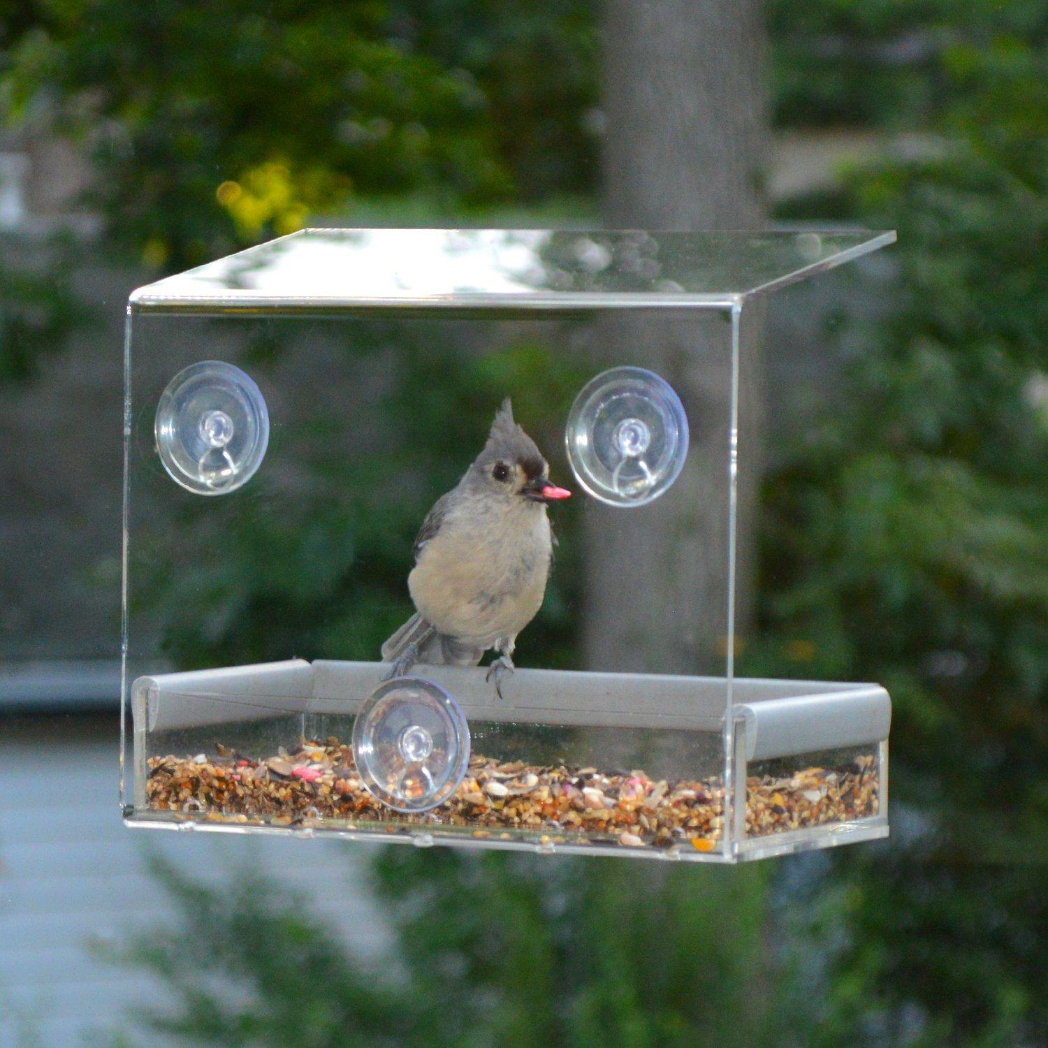 Petfusion Tranquility Window Bird Feeder in PREMIUM LUCITE ACRYLIC
