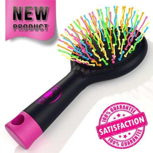 Detangling Hair Brush  for Wet Or Dry Hair