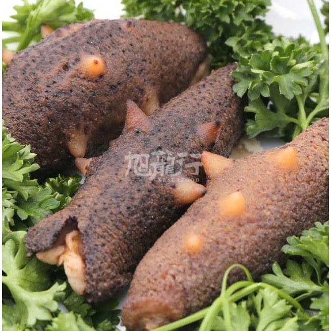 10% Off + Free Shipping The Warty Sea Cucumber  Sun Dried AAAA Grade Sale @ XLSeafood