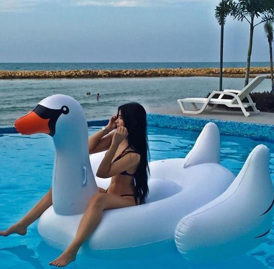 $32.30 International Leisure Giant Swan, 75 inches