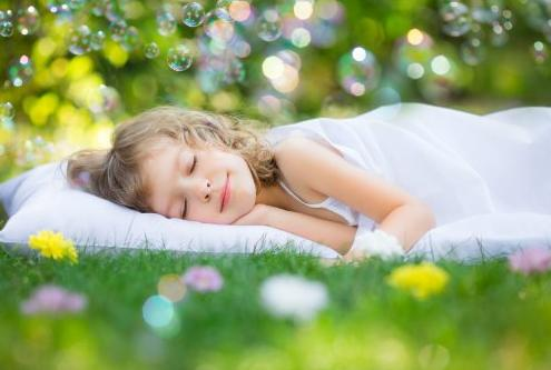 Little Dreamers Toddler Pillow with Pillow Case
