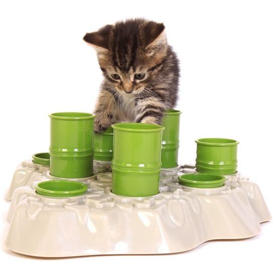 40% - 60% Off + Free shippingPet Products @ Fab