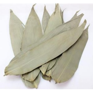 DP Bamboo Leaves (XL)