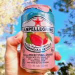 San pellegrino Prickly Pear and Orange Sparkling Fruit Beverage, 11.15 fl oz. Cans (24 Count)