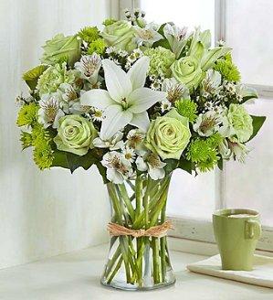 8.5折~鲜花是春天最好的礼物~1-800-Flowers.com精选多款鲜花花束及礼物优惠