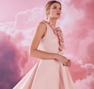 25 % OffDress Sale @ Ted Baker