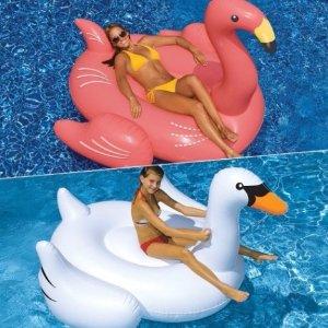 $50.99Swimline 网红白天鹅、火烈鸟泳池漂浮玩具热卖