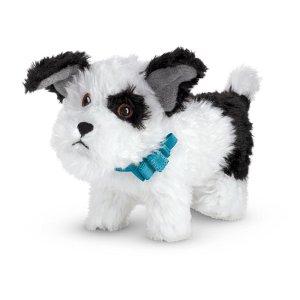 Melody's Dog, Bo