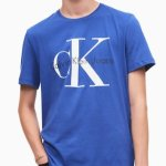 Calvin Klein Men's T-Shirt POLO Sale