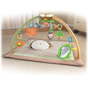 Fisher-Price Deluxe Snuggabunny Gym | X2916 | Fisher-Price