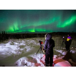 5 Day Tour to Fairbanks, Aurora Observation , Land across the Arctic Circle