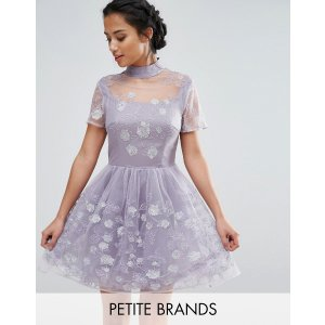 Chi Chi London Petite Mesh High Neck Mini Prom Skater Dress With Floral Metallic Embroidery