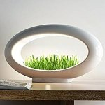 Buy a garden and Bring it home!Valsfer Grasslamp(Wheatgrass not Included)