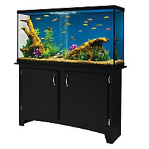 Marineland® 60 Gallon Heartland LED Aquarium with Stand | fish Aquariums | PetSmart