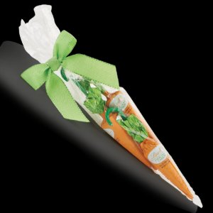 Chocolate Carrot Gift Bag | Lindt Easter Chocolate