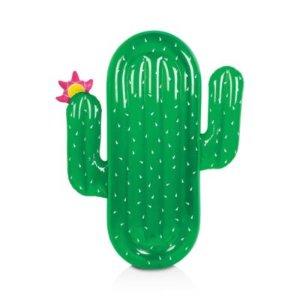 Cactus Float