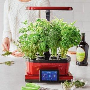 AeroGarden Harvest Touch with Gourmet Herbs Seed Pod Kit | Sur La Table