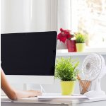 Avalon Powerful Clip On & Desk Fan With Fully Adjustable Head, Two Quiet Speeds, 6-Inch - White