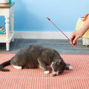 史低价 $3.99 (原价$10.72) 销量冠军Go Cat 喵星人玩具