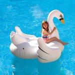 Elegant Giant Swan 73