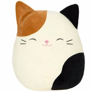 $9Squishmallow Plush Toys @ Walgreens