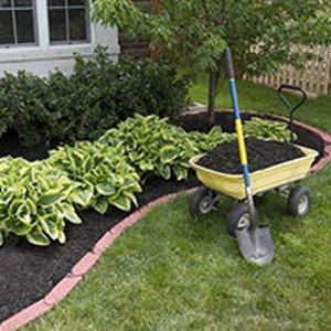 color mulch
