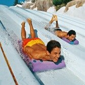 $52+Disney's Blizzard Beach Water Park