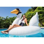 Select Intex Floats @ Amazon.com