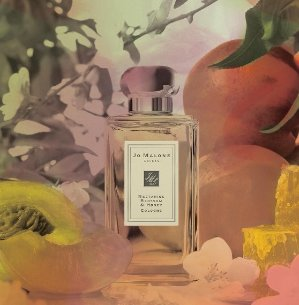 ENJOY A DELUXE SAMPLE OF BASIL & NEROLI COLOGNE AND ENGLISH PEAR & FREESIA BODY CRÈMEWith $65 purchase