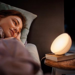 Philips 798835 Hue Go Personal Wireless Lighting