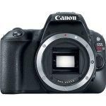 Canon EOS SL2 & 6D Mark II DSLR Pre-Order