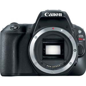 As Low As $549Canon EOS SL2 & 6D Mark II DSLR Pre-Order