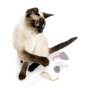 $1.32 (Orig $3.99)  Lowest priceSmartyKat Skitter Critters Cat Toys Catnip Mice