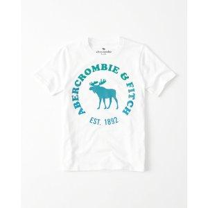 男童T恤 | boys clearance | Abercrombie.com