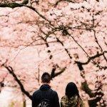 Globerouter.com announces it's Spring Break Travel Sale