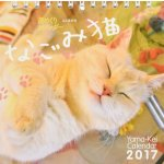 Cats Table Calendar 2017 @Amazon Japan