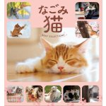 The Best Cat Selection Photobook @Amazon Japan