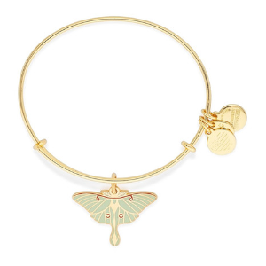Alex and Ani | Luna Expandable Moth Charm Bracelet | Nordstrom Rack