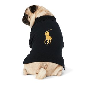 Big Pony Cotton Dog Polo
