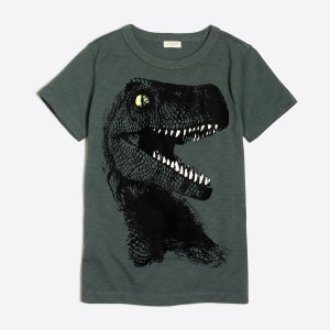 Boys' glow-in-the-dark T.rex storybook T-shirt : storybook t-shirts | J.Crew Factory