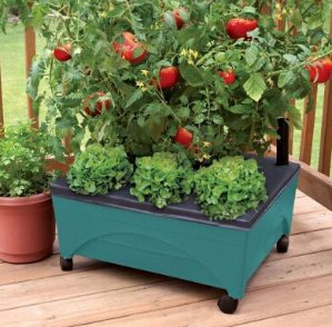 Up to 33% offSelect Rain Barrels and Garden Kits