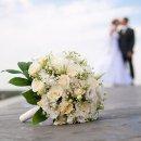 如何在美帝举办一场完美的婚礼?我们结婚啦!