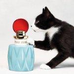 Miu Miu Fragrance Set @ Nordstrom