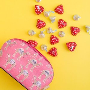 Extra 30% OffSpice Things Up Collection @ kate spade