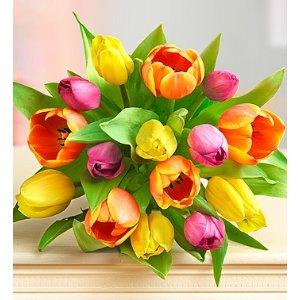 Assorted Tulips,30朵花+花瓶+巧克力
