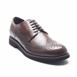 Tod's Tod's Men's Leather Lace-Up Oxford Shoes Brown | Bluefly.Com