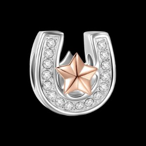Lucky Star Horseshoe Rose Gold - Good Luck - Charms