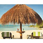 Hyatt All Inclusive Resorts Sale
