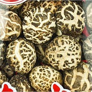 TS Dried Mushrooms 12oz (#43132)